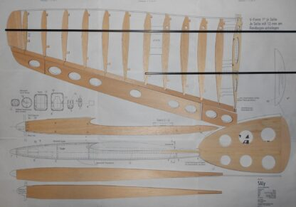 SALy Flying Wing Glider Plan